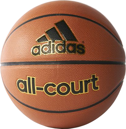 Picture of All-Court Basketball